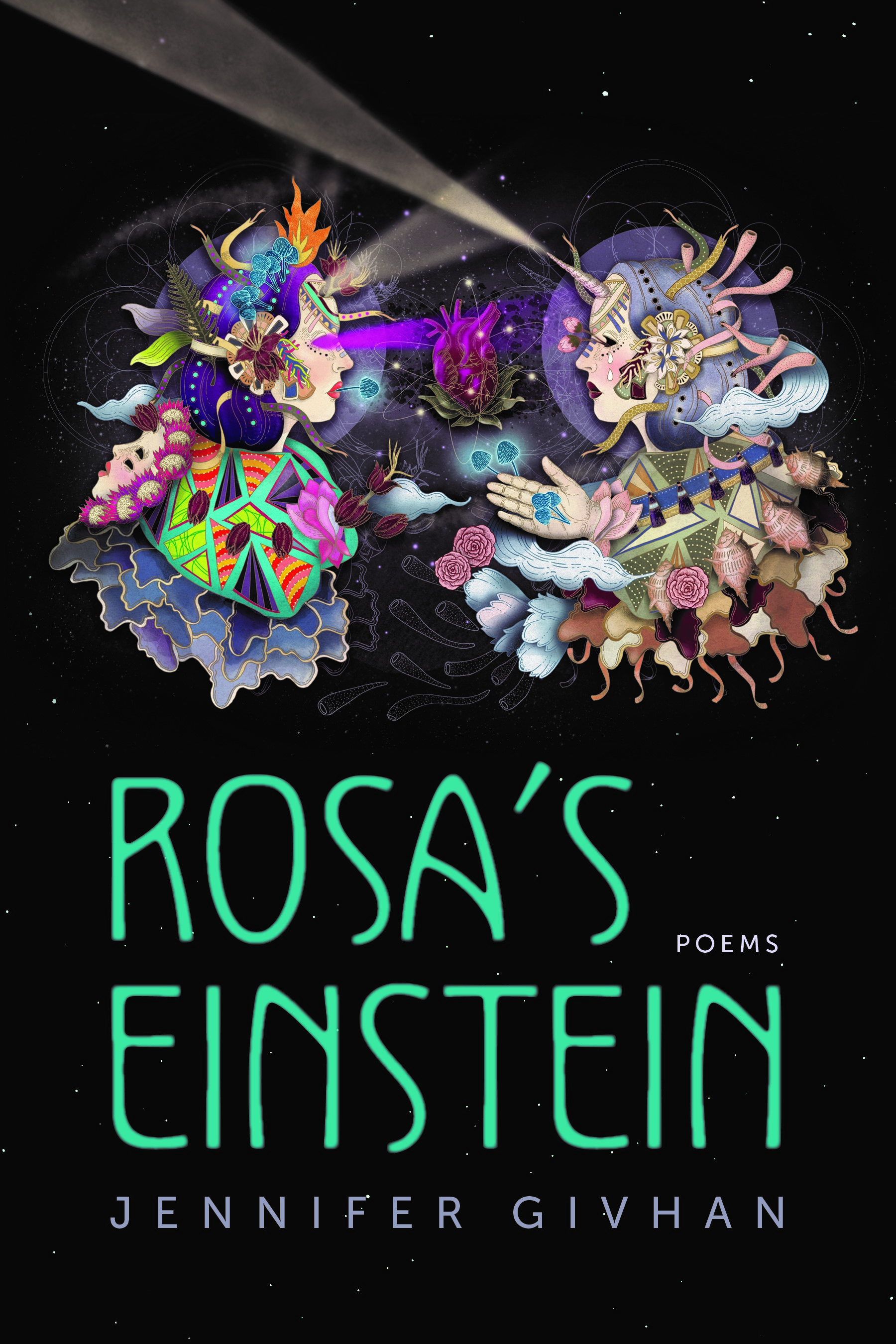 rosa's einstein update